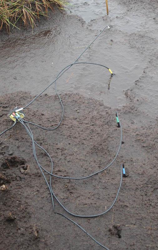 Temperature spider sensor tests on peat